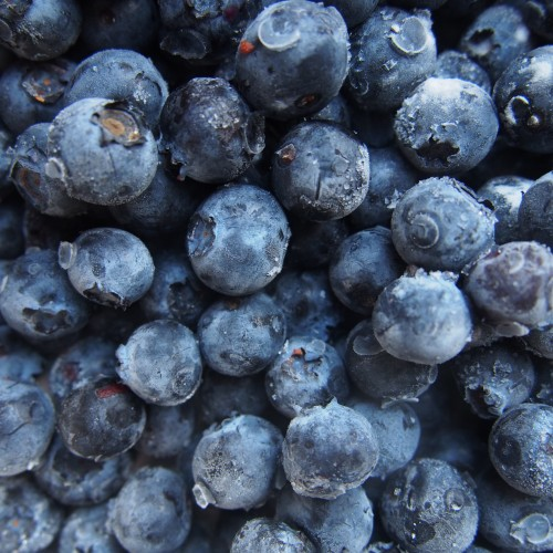 Organic Blueberry Superfood