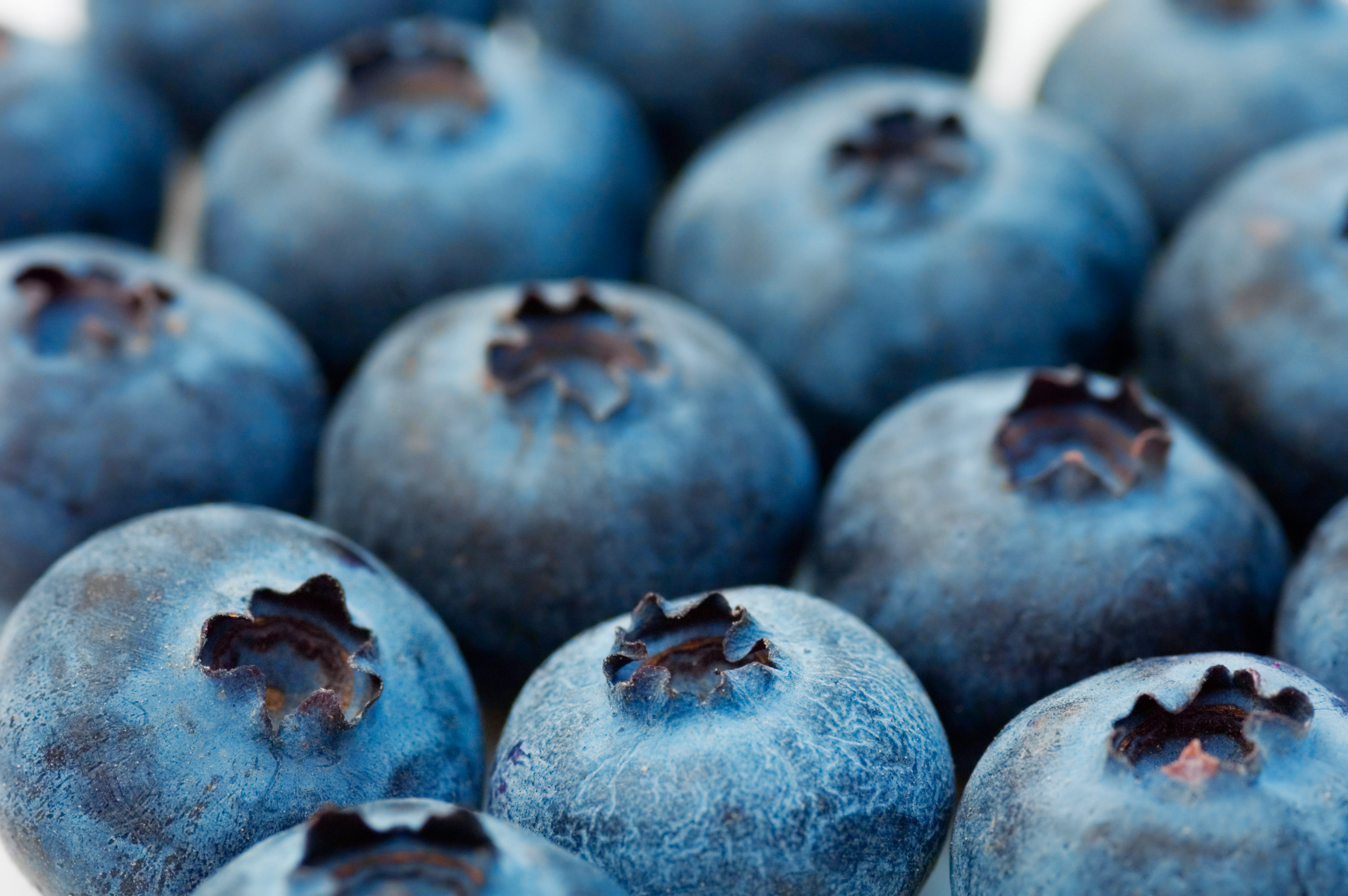 Would You Eat a Crunchy Blueberry?