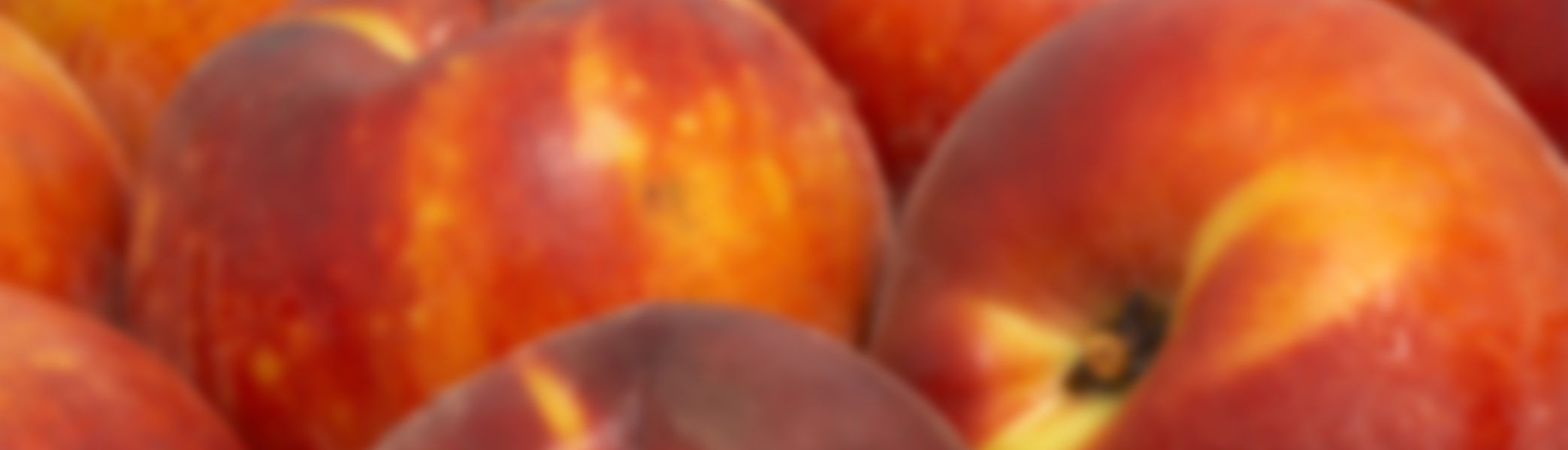 5 Facts About Peaches You Should Know