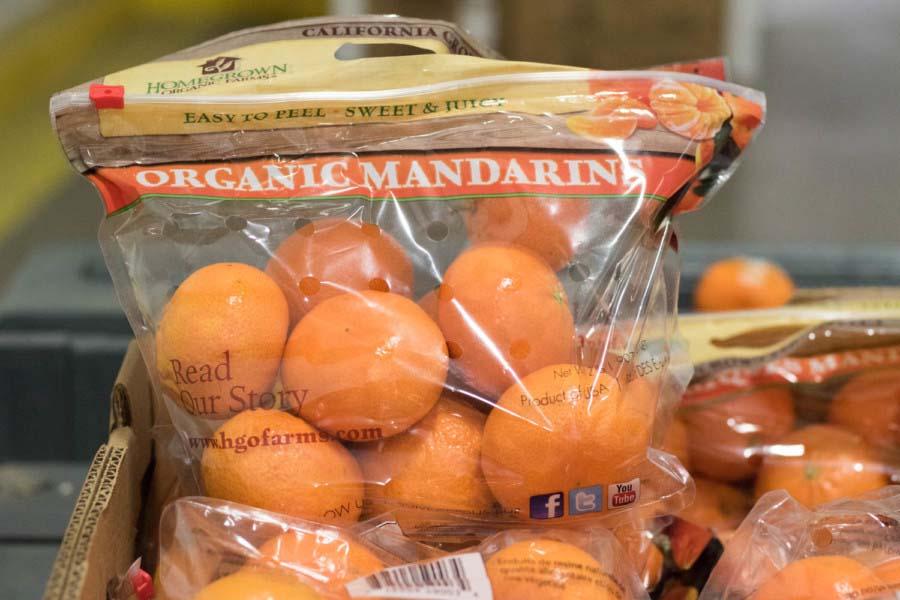Mandarin Zippered Pouch Bag